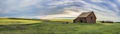 Abandoned Homestead (AnitaErdmann) Tags: 2016 alberta anitaerdmann july abandoned farm homestead rowley anitaerdmann2016