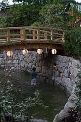 DSC_3841 (kazuchan_nara) Tags:   kyoto japan kitanotenmangu