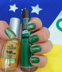 Brasil (Marli 2011) Tags: colorama copadascores impala isisvalverde