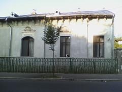 IMG15467 (chicore2011) Tags: cat windowsill morning