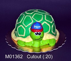 M01362 (merrittsbakery) Tags: cake shaped animal turtle
