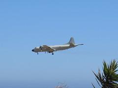 P-3 Orion (Risager) Tags: grancan planespotting elburrero gando