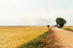 Vietnamese farm