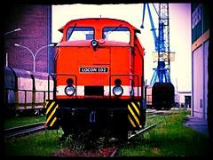 Locon 102 (346 006-0) (v8dub) Tags: railroad train germany deutschland diesel eisenbahn railway zug loco locomotive 102 bahn allemagne treno stralsund trein vorpommern lokomotive lok privat diesellok privatbahn abstellgleis locon mecklenbug