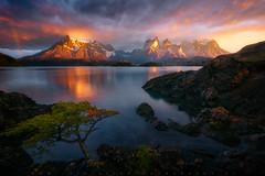 El Observador (LFelipe_P) Tags: chile patagonia mountain lake landscape dawn lights torresdelpaine