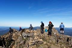 20160424-41-Crowded Hartz Peak (Roger T Wong) Tags: people trek outdoors nationalpark walk australia hike scree tasmania bushwalk tramp 2016 dolerite hartzpeak hartzmountainsnationalpark sony1635 rogertwong sel1635z sonya7ii sonyilce7m2 sonyalpha7ii sonyfe1635mmf4zaosscarlzeissvariotessart
