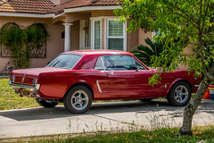 Mustang (randyherring) Tags: california ca red house tree green classic ford window grass car us afternoon unitedstates outdoor sanjose driveway mustang classiccars