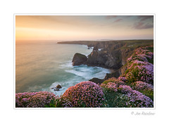 Living Landscape (Joe Rainbow) Tags: ocean flowers sunset sea seascape nature landscape coast spring cornwall scenic cliffs coastal bedruthan seapinks