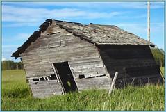 There was a crooked man... (LavenderMillie) Tags: barn farm alberta nurseryrhyme