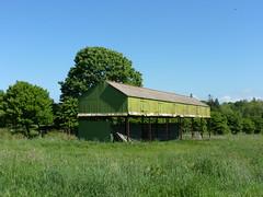 Decaying Shed (K Garrett) Tags: irish abandoned barn tin iron farm steel farming shed sheets corrugated asbestos