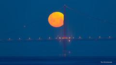 Moonset Golden Gate Bridge Time lapse (davidyuweb) Tags: bridge golden timelapse gate moonset sfist luckysnapshot