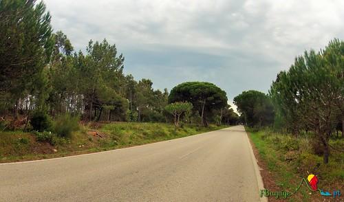 TravessiaBTT_Leiria-Sagres_8Dia_088