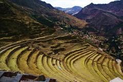 (septembre.stephanie) Tags: peru archaeology inca ruins pisac