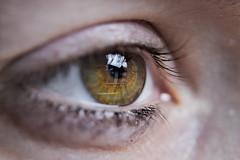 Iris (Ru GarFer) Tags: iris luz ojo reflejo mirada pupila pestaa ninia begirada islada begia crnea irisado betilea
