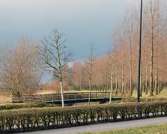 Bridge, hedge and trees (fotophotow) Tags: netherlands nederland engelen shertogenbosch noordbrabant northbrabant