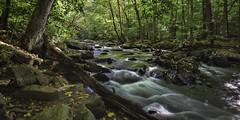 Hacklebarney (William_Doyle) Tags: autumn trees green fall nature water photoshop river october rocks stream nj chester brook 2014 hacklebarneystatepark topazadjust topazclarity