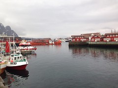 Starting my week 250 kilometres north of the Arctic circle in Lofoten. It smells of Fish!!!