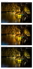 Cual?... What is better? (rogoDESIGN) Tags: rgb srgb prophotorgb whatisbetter adobergb1998 cualsevemejor