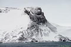 _DSC1050 (Roy Prasad) Tags: ocean travel cruise vacation snow ice expedition rock island penguin volcano lava boat gentoo ship sony south antarctica tamron prasad shetland a7ii southshetlandislands 150600mm royprasad a7m2