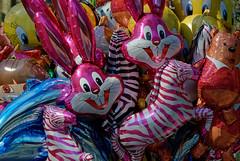 Frohe Ostern / Happy Easter (vb-bildermacher) Tags: ballon lachen luft bunt hase freude luftballon farbenfroh kindertrume folienballon hasengesicht folienballons figurenballon