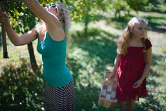 _MG_5254-12 (k.a. gilbert) Tags: sunglasses outside outdoors breasts tits boobs charlotte mother naturallight stomach belly waist tummy kristen wife handheld applepicking fullframe cleavage abs milf manualfocus wideopen downblouse hillorchards manualaperture canon5dc rokinon35mmf14