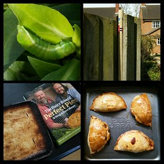 My Sunday ( EkkyP ) Tags: food cooking collage fence pie four yum caterpillar stump april 365 pasty 2015