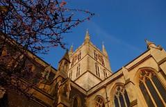 Church & Cherry Blossom, Southwark Cathedral, London Bridge (alex.illumidata) Tags: pink blue tree london church stone architecture cherry golden spring cathedral cherryblossom southwarkcathedral arthurblomfield georgegwilt
