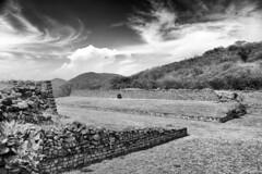 Contemplando los siglos (julien.ginefri) Tags: voyage street trip travel viaje vacation cactus holiday mxico mexico calle pyramid ruin ruine ruina explore mexican mexique agave rue pyramide mexicano vacance piramide xochicalco vacacion