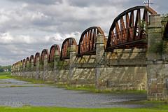 Dömitzer Brücke (Elbmaedchen) Tags: ruine brücke elbe mvp eisenbahnbrücke lostplaces dömitz brückenbogen elbetal überschwemmungsgebiet harkort dömitzereisenbahnbrücke