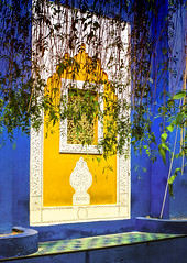 blue and yellow (Pixie Pix (Thelms Eye)) Tags: blue yellow gardens marrakech