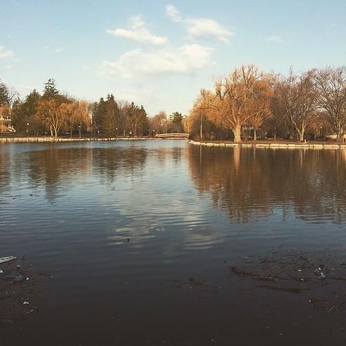 Trout Lake, Ontario style.