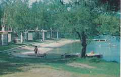 NW Bellaire Antrim MI 1950s RECREATION POINT RESORT on Intermediate Lake Your Hosts MIKE AND HAZEL MAHONEY at the Intermediate Lake Boat Rentals SHUFFLEBOARD TOO2 (UpNorth Memories - Donald (Don) Harrison) Tags: travel usa heritage history tourism vintage antique michigan postcard memories restaurants hotels trailer roadside upnorth cafes attractions motels cottages cabins campgrounds upnorthmemories rppc wonders michigan memories parks entertainment natural harrison roadside travel don tourist puremichigan stops upnorth