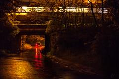 Wet nighty colors /2 (Videmus Clare) Tags: road city travel bridge trees reflection wet lamp colors car train lights golden moving long exposure time suburban trails move lighttrails redlight movment