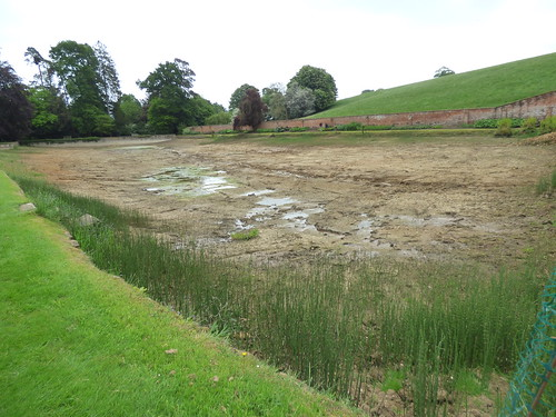 Upton House and Gardens - Mirror Pool drained