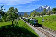 """Ae 6/6 11407 """"SBB Historic"""" Meggen (Matthias Greinwald) Tags: zug sbb 66 historic ae bundesbahn bunde crom sonderzug 11407 schweizerische personenzug kantonslok"""
