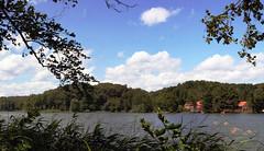 Reviere Lanke und Prenden Sommer 2016  Hellmhle (Forstamt Pankow / Berliner Forsten) Tags: flora wasser wolken sonne faun wasserpflanzen berlinerforsten forstamtpankow revierlankeprenden