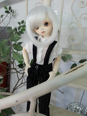 Dolcetto's Debut (almyki) Tags: white ball asian cafe doll skin may jr fairy tiny junior bjd tall 16 bf abjd joint ws bluefairy nine9style