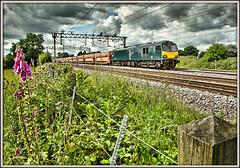 Foxy Dyson (david.hayes77) Tags: dyson class92 92023 cs caledoniansleeper cars freight cheshire actonbridge foxglove flower 6l48 wcml westcoastmainline hedgerow digitalis gbrf