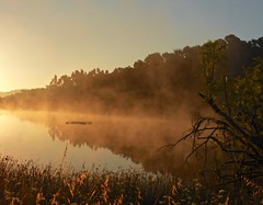 Morning mist over the lake at Tamera (Kumukulanui) Tags: mist lake reflection portugal sunrise dawn community hill odemira ecovillage tamera icsa