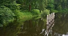 Hezenbergersluis bij Hattem - 'Apeldoorns kanaal' (henkmulder887) Tags: panorama holland nature water landscape groen natur thenetherlands natuur natura kanaal zwolle overijssel sluis landschap hattem maartenvanrossumpad apeldoornskanaal waternavel woekeren hezenbergersluis law4 grotewaternavel