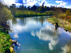 Mirror River (River Thame) (semonalarochelle) Tags: sky tree nature water grass clouds greenery bushes hedges riverthame