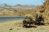 Adi Tekliezan (Eritrea) - Kebesa landscape (Danielzolli) Tags: eritrea эритрея ertra erythrée إرتريا erythrea ኤርትራ eritra habesha anseba ዞባዓንሰባ zobaanseba regionanseba ዓንሰባ landschaft pejsaz paysage landscape paisaje ландшафт пейсаж kebesa kebessa hochland highland esel burro donkey osel âne aditekliezan habrenqaqa balwa