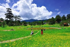 Fushoushan Farm , (Vincent_Ting) Tags:            maple maples     taiwan formosa autumn  nikon nature water sky   cosmos vincentting  blussky clouds  galaxy milkyway