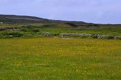 DSC_1042 (kulturaondarea) Tags: viajes irlanda bidaiak