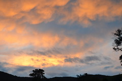 Good morning Bonnie Doon (Jan Harman) Tags: clouds earlymorning bonniedoon northeastvictoria