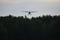 DSC_1032 (SkyPilot181) Tags: airplane aircraft airshow flyin d11