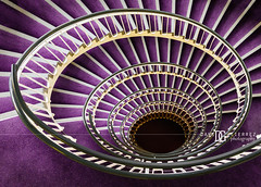 """Premier Inn Spiral Staircase"" London, UK (davidgutierrez.co.uk) Tags: london architecture art city photography interior davidgutierrezphotography nikond810 nikon urban travel people color londonphotographer photographer night uk abstract afsnikkor1424mmf28ged 1424mm colors colours colour street  londyn    londres londra england europe beautiful cityscape davidgutierrez capital structure unitedkingdom britain greatbritain touristattraction vibrant vivid premierinnlondonblackfriarshotel premierinn blackfriars hotel staircase spiral spiralstaircase purple cityoflondon citiesoflondonandwestminster centrallondon windows ultrawideangle d810"
