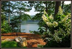 Bear Creek Lake aka Bear Lake - Explore #436 (Jerry Jaynes) Tags: flowers trees lake mountains water grass rock nc northcarolina resort explore bearlakereserve nikkor1685vr blraug2010gsmnp