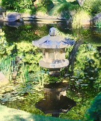 Japanese Garden inspired sanctuary Mt Cootha (Psychic Insights) Tags: flowers plants green love garden japanese peace zen gods protection greenleafs waterwagerexhibit