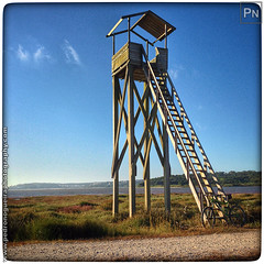Bird watch tower (Pedro Nogueira Photography) Tags: pedronogueira pedronogueiraphotography photography mobilephone telemóvel iphone5 iphoneography outdoor sport desporto lazer leisure mtb btt mountainbike bikeride voltadebicicleta goplayoutside stravacycling